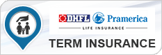 DHFL Pramerica Term Plan
