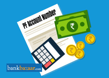 Employee PF Account Number & Check PF Account Balance Details