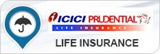 Prudential life insurance investment options